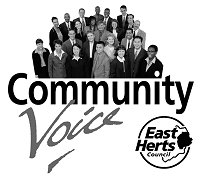Community Voice graphic