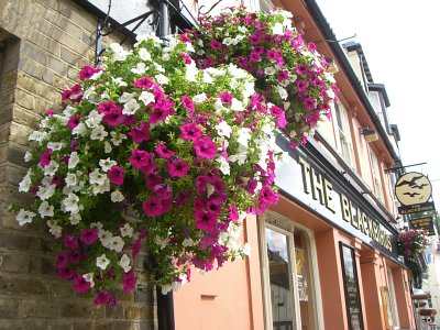 Hanging baskets outside The Blackbirds